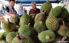 特殊时期的特殊销售手段:泰国猛男光膀子卖榴莲